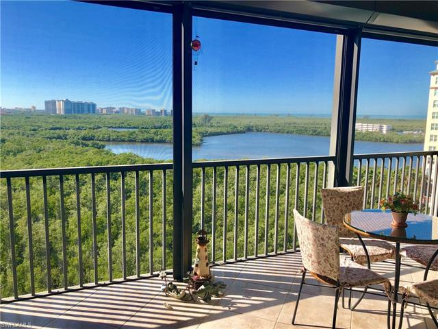 425 Cove Tower Dr 1003
